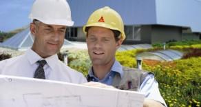 Acoperisurile verzi: sprijin pentru o casa eco si facturi mai mici