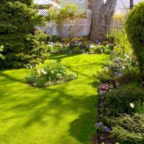 Planificarea  gradinii in luna Martie